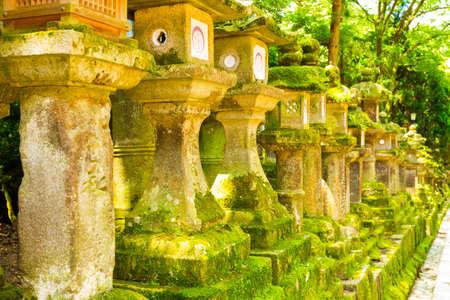 todaiji: Row of repeating moss covered stone lanterns at Todai-ji temple complex in Nara, Japan Stock Photo