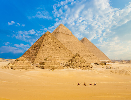 giza: All Egyptian Pyramids from distance with row of camels walking in foreground in Giza, Cairo, Egypt.  Wide telephoto shot plenty of copy space. Stock Photo