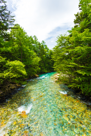 downstream: Colorful water of the Azusa River flows downstream into the forest in the pristine nature landscape of the Japanese Alps town of Kamikochi, Nagano, Japan
