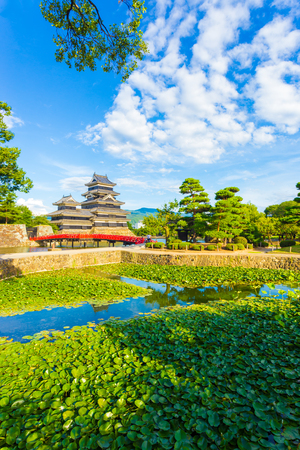 Small pond containing lily pads in the foreground of the ancient keep of Matsumoto Jo Castle on a summer day with clouds in Nagano Prefecture, Japan. Vertical