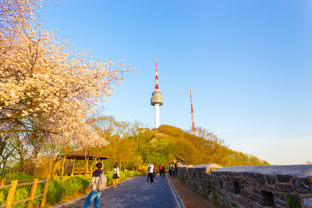 Seoul, South Korea - April 17, 2015: Tourists climbing mountain walking path to Namsan N Seoul Tower lined with old city wall and beautiful cherry blossoms in bloom on sunny, spring day