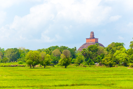 Distant Jetavanaramaya Stupa ruins and its damaged spire seen above the treeline and fields at ancient capitol of Anuradhapura in Sri Lanka. Horizontal