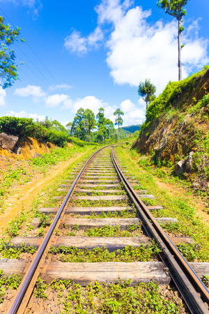 Sri Lanka Railways train tracks extend to vanishing point running thru tea plantations in hill country on a blue sky day in Haputale, Sri Lanka. Vertical