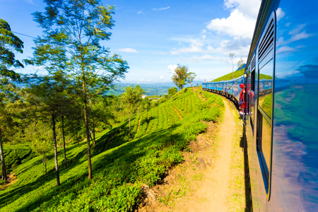 onboard: Tea plantation view and neat green tea plants seen from side exterior of passenger train curving ahead in hill country on a blue sky day in Haputale, Sri Lanka. Horizontal Stock Photo