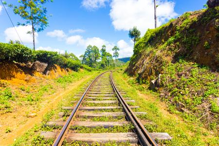 vanishing point: Sri Lanka Railways train tracks extend to vanishing point running thru tea plantations in hill country on a blue sky day in Haputale, Sri Lanka. Horizontal