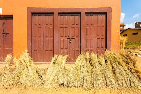 bundled: Bundled straw leaning against the outside of house after being harvested on a sunny day in Bhaktapur, Nepal. Horizontal Stock Photo