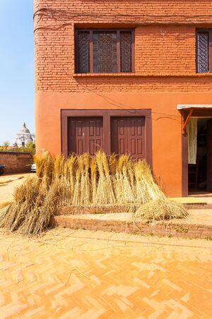 bundled: Bundled straw leaning against the outside of house after being harvested on a sunny day in Bhaktapur, Nepal. Vertical Stock Photo