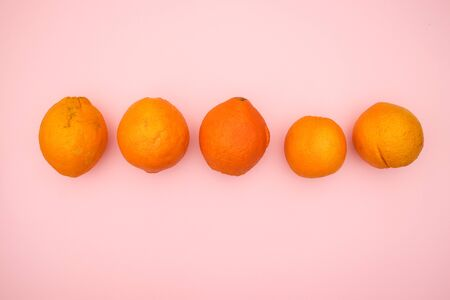 Oranges on pink background