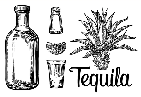 mexican: sketch set of alcoholic cocktails. engraving illustration Illustration