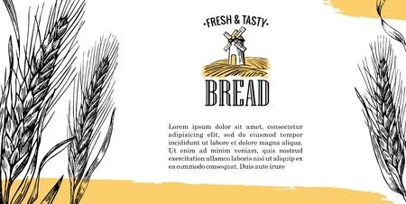 produits céréaliers: Illustration vintage de gravure pour le label, identité visuelle, badges, présentations, pour l'atelier de boulangerie. Illustration