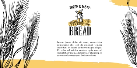 grain fields: Vintage engraving illustration for label,  corporate identity, badges, presentations, for bakery shop.