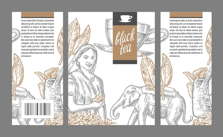 picker: Tea picker woman, tea leaves, cup, elephant. engraved vintage isolated illustration for label black tea, packaging, box.