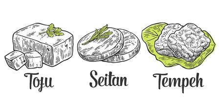 tofu: Set Vegan and Vegetarian food. Tofu, Seitan, Tempeh . Vector black vintage engraved illustration isolated on white background