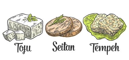채식과 채식 음식을 설정합니다. 두부, 시탄, 템페. 벡터 검은 색 빈티지 새겨진 그림 흰색 배경에 고립