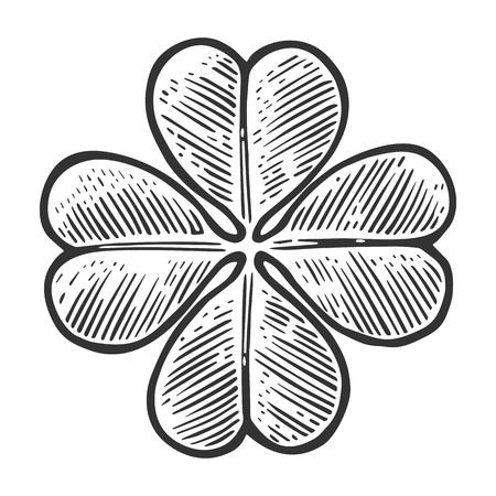 Buona fortuna quadrifoglio. Vintage illustrazione incisione di vettore per info grafica, poster, web. Nero su sfondo bianco. Vettoriali