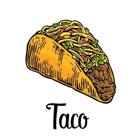 タコス - メキシコの伝統的な料理。ベクトル メニューのポスター、ウェブのヴィンテージの刻まれた例。白い背景に分離