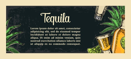 Mexican traditional food restaurant menu template with tequila, lime, botlle, glass, cactus, salt. Vector vintage engraved illustration on dark background.  For poster, web Illustration