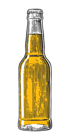 Beer bottle. Vector vintage engraved illustration isolated on white background