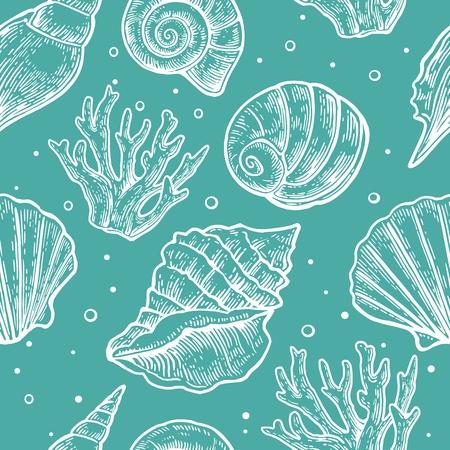 Seamless pattern sea shell.  Vector engraving vintage illustrations.