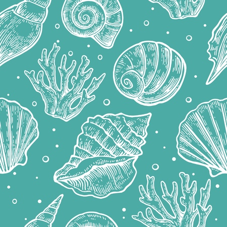 sea shell: Seamless pattern sea shell.  Vector engraving vintage illustrations.
