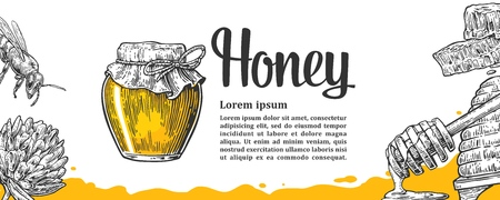 pollination: Honey set. Jars beer and honeycomb. Hand drawn design element. Vector engraved illustration. Isolated on white background.