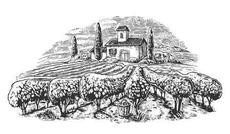 Rural landscape with villa, vineyard fields and hills. Black and white drawn vintage vector illustration for label, poster.