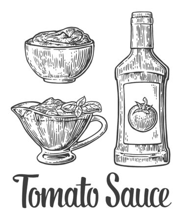tomato sauce: Ketchup bottle, tomato sauce in a plate. Vector vintage engraved illustration.