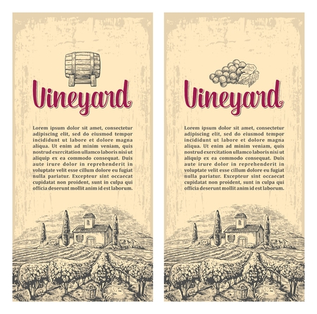 Rural landscape with villa, vineyard fields and hills. Vector engraving drawn vintage illustration. Old paper beige texture background. For label, poster, vertical banner.