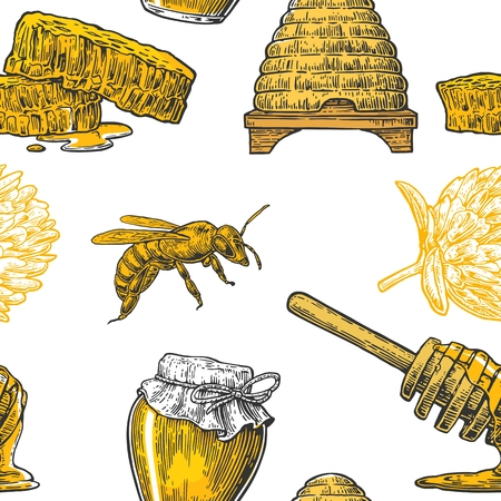 pollen: Honey Seamless Pattern. Jars, bee and honeycomb. Hand drawn design element. Vector engraved illustration. Isolated on white background.