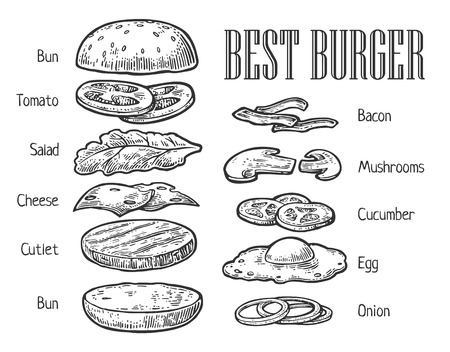 Burger ingredients. Isolated painted components on white background. Vector vintage engraving illustration for poster, menu, web, banner, info graphic