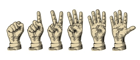 gesticulation: Set of gestures of hands counting from zero to five. Male Hand sign. Vector vintage engraved illustration isolated on white background. Illustration