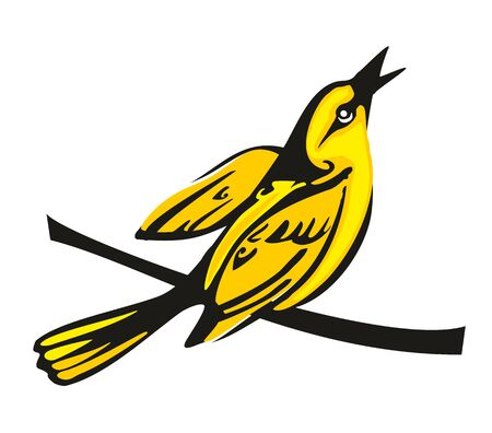 oriole: Golden Oriole perched on a branch. Vector flat illustration. Illustration