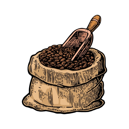 bagful: Sack with coffee beans with wooden scoop. Hand drawn sketch style. Vintage color vector engraving illustration for label, web, flayer. Isolated on white background.