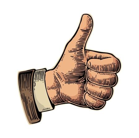 Al igual que la mano que muestra el símbolo. Haciendo dedo pulgar hacia arriba gesto. Dibujado a mano elemento de diseño. Ilustración de color cosecha ilustración grabada aislado sobre fondo blanco. Muestra para la web, carteles, información gráfica Ilustración de vector