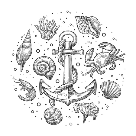 Set sea shell, coral, crab, shrimp and anchor. Vector engraving vintage illustrations. Isolated on white background. Illustration