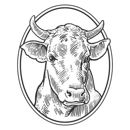 Koeien hoofd. De hand getekend in een grafische stijl. Vintage vector graveren illustratie voor info grafisch, poster, web. Geïsoleerd op witte achtergrond Stock Illustratie