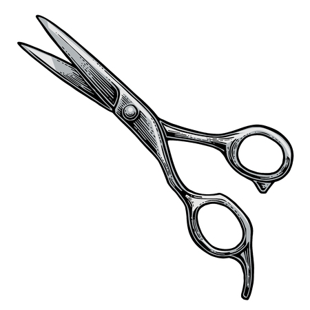 Shears. Vector color illustrations on white backgrounds. Hand drawn vintage engraving for poster, label, banner, web