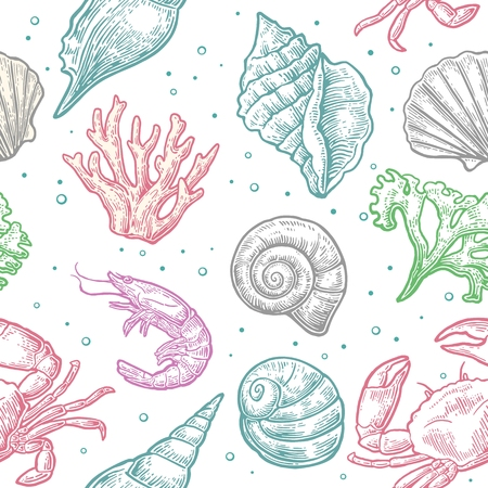 illustrated: Seamless pattern sea shell, coral, crab and shrimp. Vector engraving vintage illustrations. Isolated on white background.