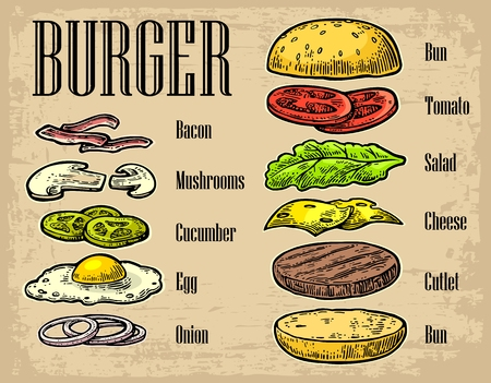 bacon and eggs: Burger ingredients on beige background. Set isolated color painted components. Vector vintage engraving Illustration for poster, menu, web, banner, info graphic Illustration