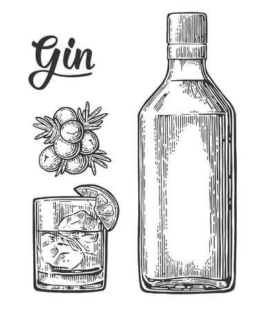 Glass and bottle of gin and branch of Juniper with berries. Vintage vector engraving illustration for label, poster, web, invitation to party. Isolated on white background