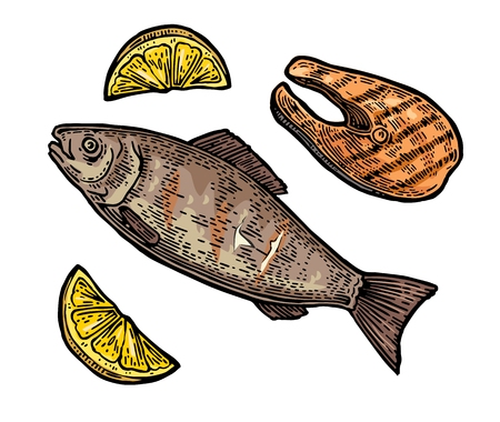 Beef grilled fish steak with lemon top view. Vintage color engraving illustration. Isolated on white background.