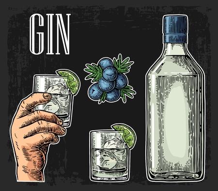 Vidrio y botella de ginebra y rama de enebro con las bayas. ilustración de grabado de la vendimia para la etiqueta, el cartel, web, invitación a la fiesta. Aislado en el fondo oscuro