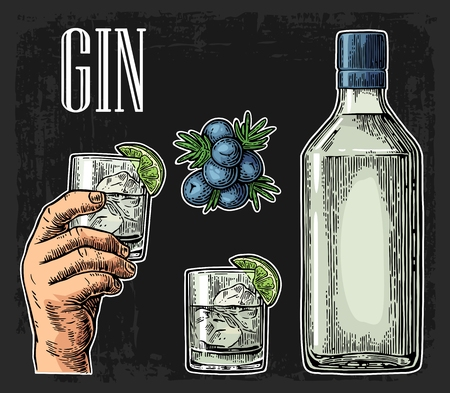 Glass and bottle of gin and branch of Juniper with berries. Vintage engraving illustration for label, poster, web, invitation to party. Isolated on dark background Vectores