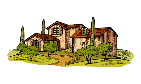 cypress tree: Rural landscape with villa or farm with field, olive tree and cypress. Vector engraving vintage color illustration. Isolated on white background.