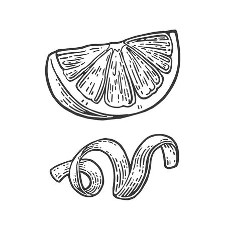 Sector de limón y la cáscara giraban. Aislado en el fondo blanco. Vector vendimia negro grabado ilustración. dibujado a mano elemento de diseño de etiqueta y el cartel