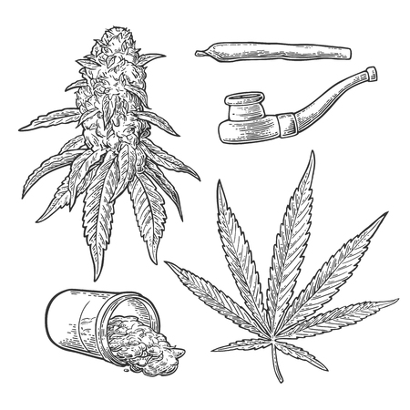 Marijuana buds, leaves, jar, cigarettes and pipe for smoking. Hand drawn design element. Vintage black vector engraving illustration for label, poster, web. Isolated on white background