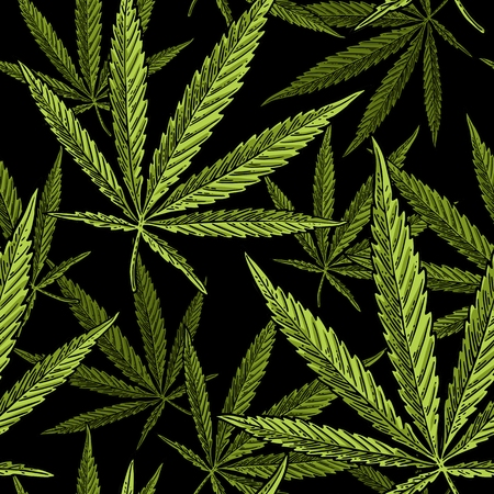 Seamless pattern with marijuana leaf. Hand drawn design element. Vintage color vector engraving illustration for label, poster, web. Isolated on black background Ilustração