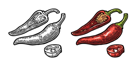 Chilli whole, half and slice. Vector vintage color and black engraved illustration for menu, poster, web. Isolated on white background.