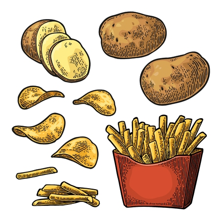 French fry stick potato in paper box and chips. Isolated on white background. Vector vintage engraving color illustration for poster, menu, web, banner, info graphic