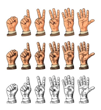 Set of gestures of hands counting from zero to five. Male Hand sign. 向量圖像